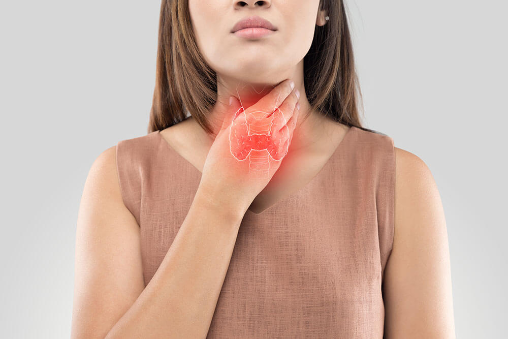 How Your Thyroid Affects Your Reproductive System
