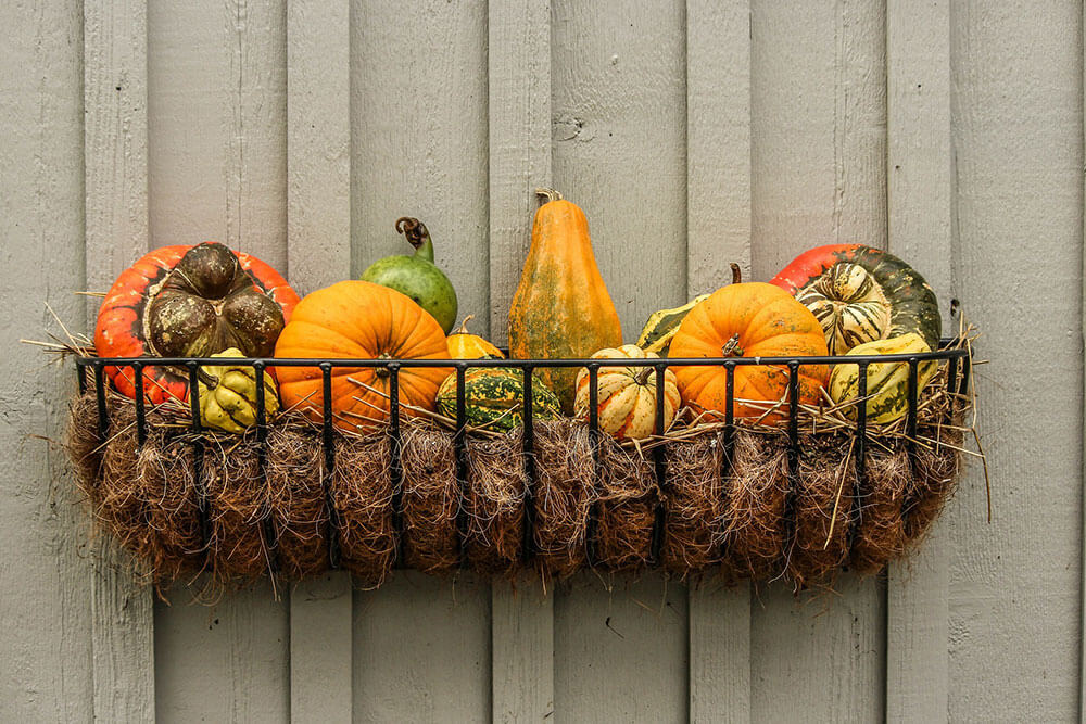 Best Fall Foods That Celebrate the South