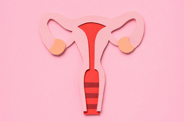 Frequently Asked Questions About Endometrial Ablation